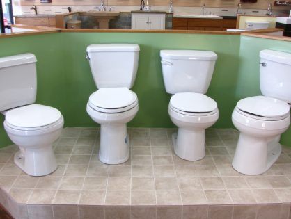 Plumbers Picks Toilets Part 2: One-Piece Toilet or Two-Piece Toilet